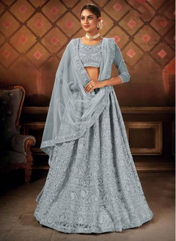 Grey Net Party Wear Designer Embroidery Work Lehenga Choli